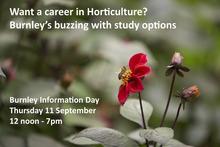Burnley Information Day