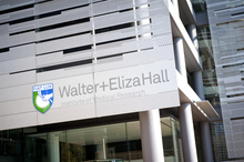Consumers enhancing WEHI Research