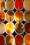 Tantalising Culinary Tastes of India